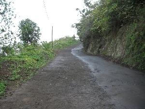 hawaii20071484.jpg