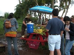 hawaii20071512.jpg